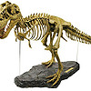 Geoworld T-Rex Skeleton