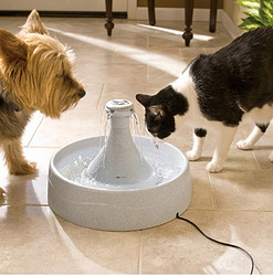 PetSafe Drinkwell 360 Pet Fountain 宠物饮水器 +凑单品